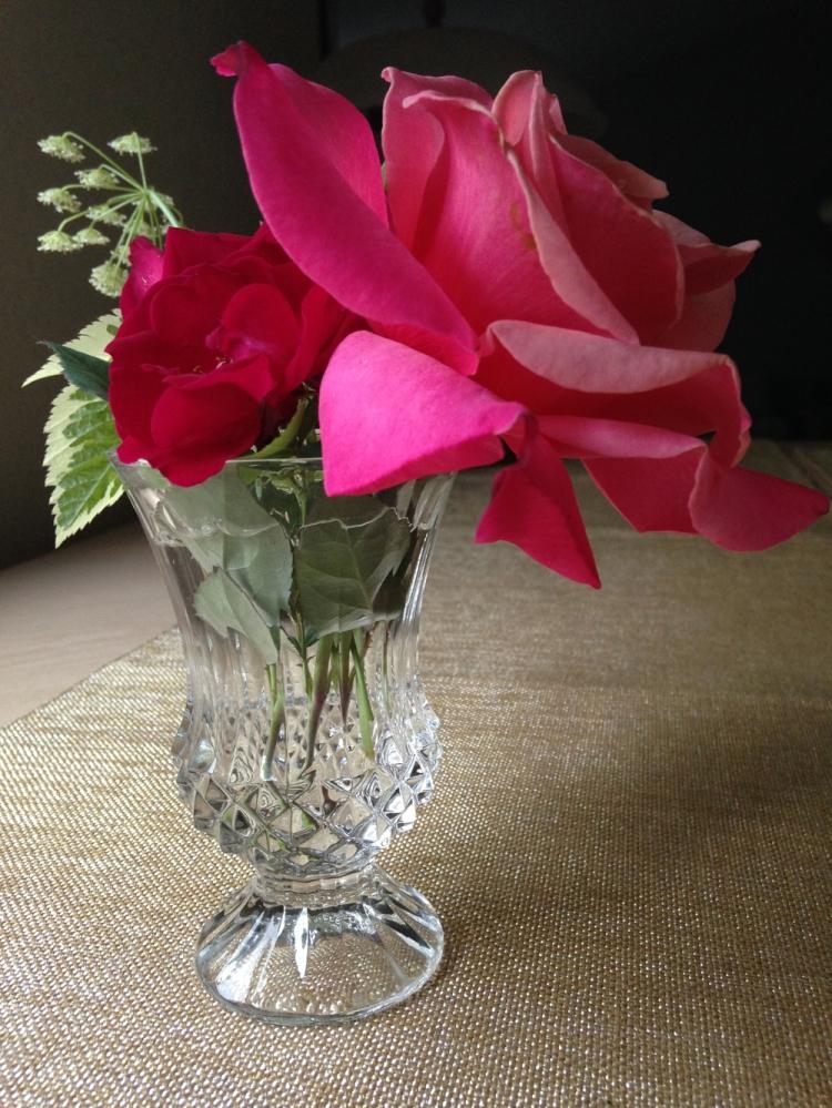 Roses photo by Tresa