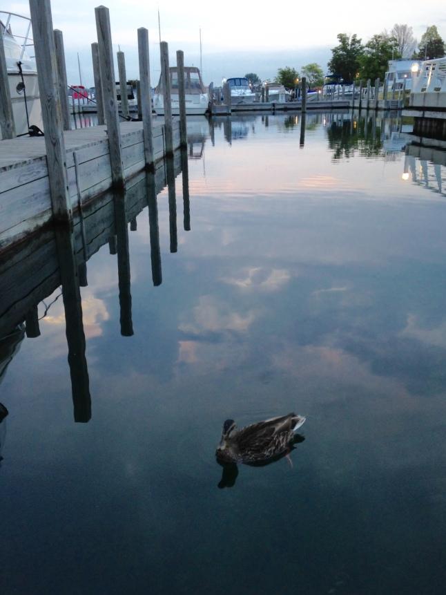 Traverse City, Michigan, Boating, Solitude, Photo101, HungryDucks, Photography, TresaArt, Serene blue, Rose quartz, Pantone 2016