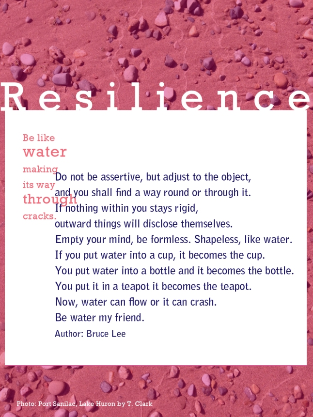Resilience, tresa meyer clark, optimistic