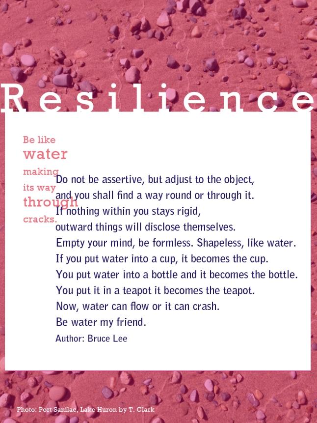 Resilience, tresa meyer clark, optimistic